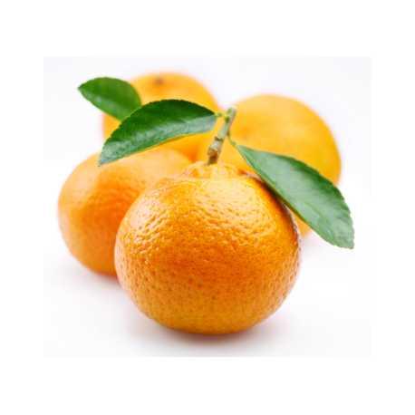 Mandarinková silica 10ml