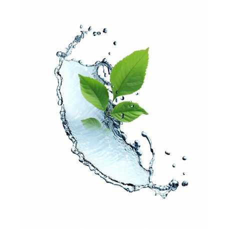 Šípkový extrakt CO2 12ml
