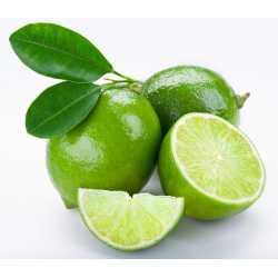 Limetková silica 10 ml
